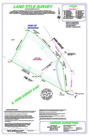 Lot 1A Ann Drive, MURCHISON, TX 75778 (MLS #95326) :: Steve Grant Real Estate