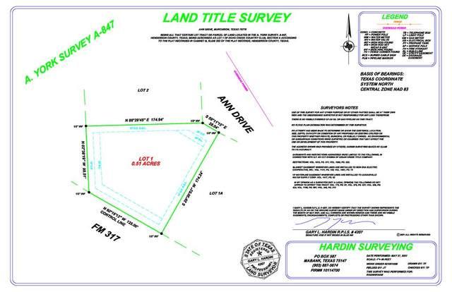 Lot 1 Ann Drive, MURCHISON, TX 75778 (MLS #95351) :: Steve Grant Real Estate