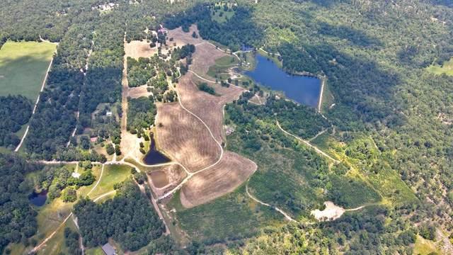 Off of Cr 3302, BROWNSBORO, TX 75756 (MLS #95376) :: Steve Grant Real Estate