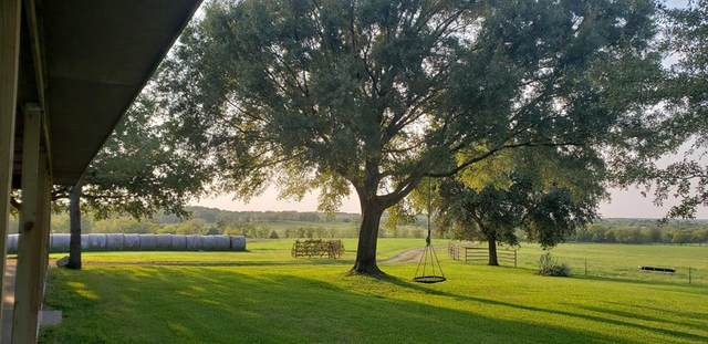 17151 Cr 4056, KEMP, TX 75143 (MLS #95429) :: Steve Grant Real Estate