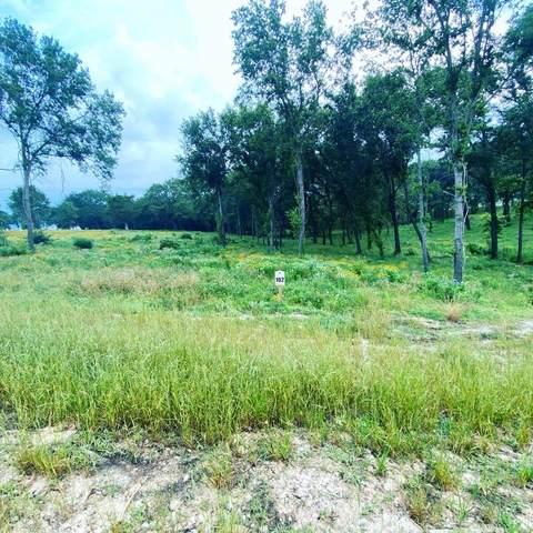1579 Shoreline, KEMP, TX 75143 (MLS #95639) :: Steve Grant Real Estate