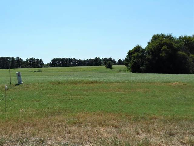 Lot 143 Bridle View Ct, ATHENS, TX 75752 (MLS #96052) :: Steve Grant Real Estate