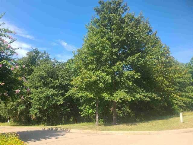 2938 Stewart Way, TYLER, TX 75709 (MLS #96301) :: Steve Grant Real Estate