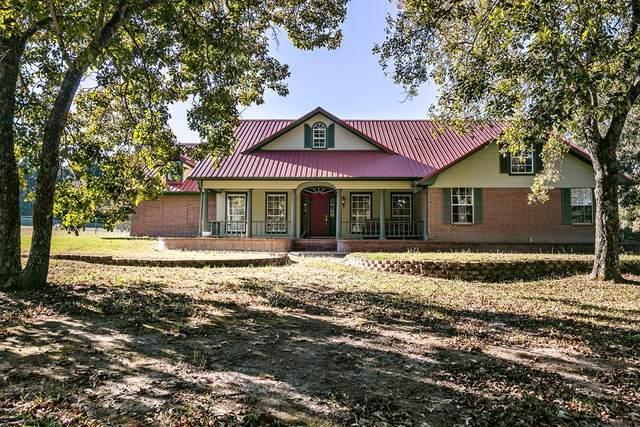 9819 Cr 3613, MURCHISON, TX 75778 (MLS #96374) :: Steve Grant Real Estate
