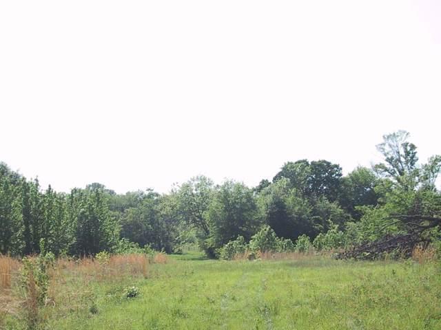 4320 Fm 17 S, ALBA, TX 75410 (MLS #72310) :: Steve Grant Real Estate