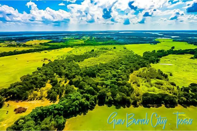 0 Undetermined Address, GUN BARREL CITY, TX 75156 (MLS #85167) :: Steve Grant Real Estate