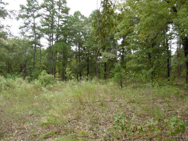 TBD Timber Ridge, LARUE, TX 75770 (MLS #86746) :: Steve Grant Real Estate