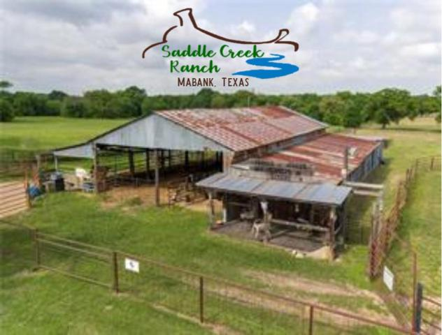 14271 Cr 4012, MABANK, TX 75147 (MLS #87341) :: Steve Grant Real Estate