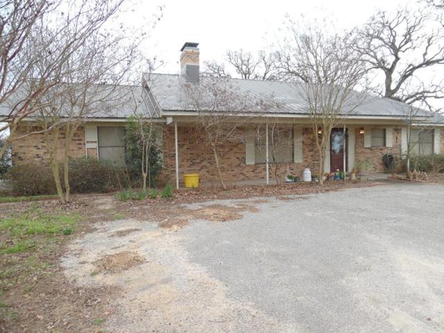 8076 Fm 1803, ATHENS, TX 75752 (MLS #87404) :: Steve Grant Real Estate