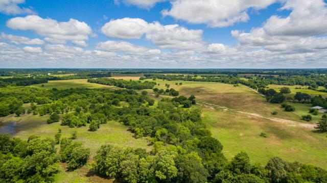 TBD Cr 3802, MURCHISON, TX 75778 (MLS #88004) :: Steve Grant Real Estate