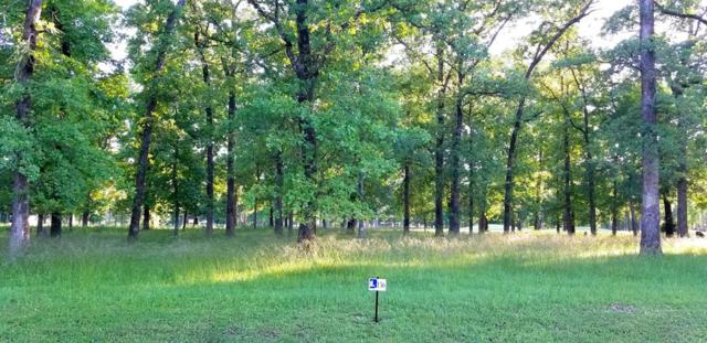 221 Saint Andrews, MABANK, TX 75156 (MLS #88096) :: Steve Grant Real Estate