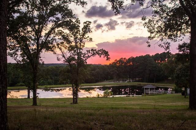 9201 State Hwy 19 South, ATHENS, TX 75752 (MLS #88674) :: Steve Grant Real Estate