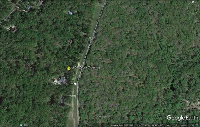 Lot 37 Zebra Crossing, LARUE, TX 75770 (MLS #89263) :: Steve Grant Real Estate