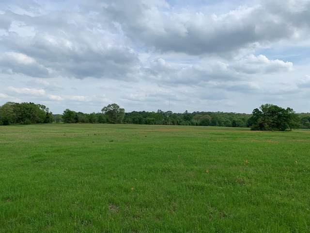 6 Hwy 19 North, ATHENS, TX 75751 (MLS #93911) :: Steve Grant Real Estate