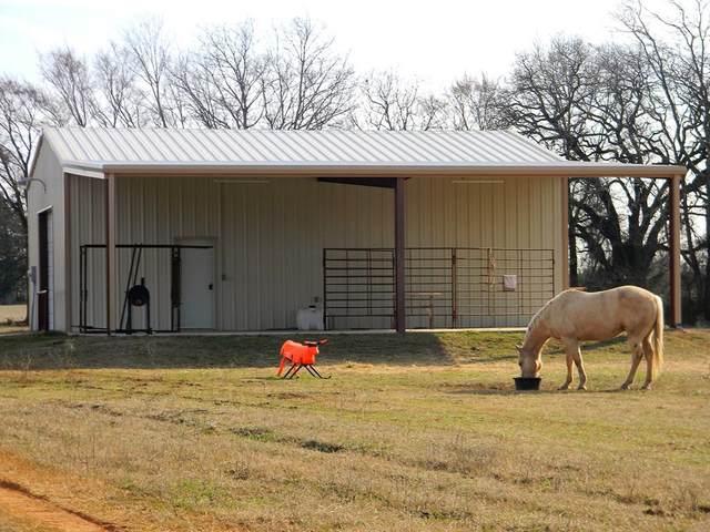 13946 Cr 1120, ATHENS, TX 75751 (MLS #94292) :: Steve Grant Real Estate