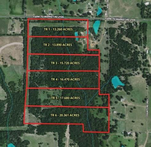TR 6-TBD Fm 2709, ATHENS, TX 75752 (MLS #95725) :: Steve Grant Real Estate