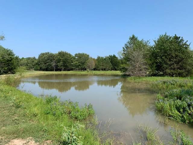 17299 Cr 4052, KEMP, TX 75143 (MLS #95806) :: Steve Grant Real Estate