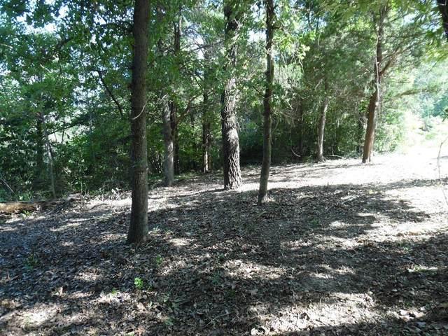 L 39-40 Cottonwood Lane, MURCHISON, TX 75778 (MLS #88763) :: Steve Grant Real Estate