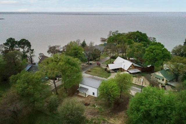 224 Loon Bay Drive, GUN BARREL CITY, TX 75156 (MLS #90917) :: Steve Grant Real Estate