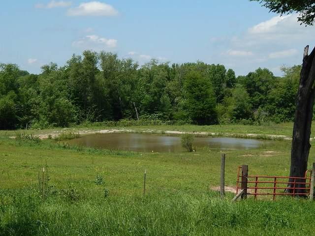 350 Fm 2339, BEN WHEELER, TX 75754 (MLS #91125) :: Steve Grant Real Estate