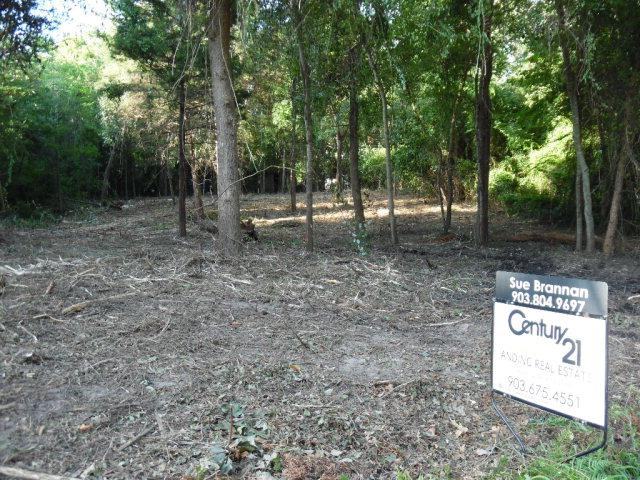312 Callender Lake Drive, MURCHISON, TX 75778 (MLS #79541) :: Steve Grant Real Estate