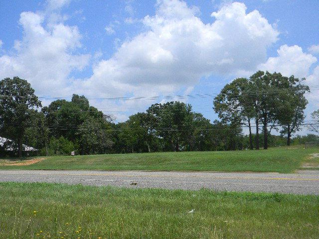 1005 S Palestine Street, ATHENS, TX 75751 (MLS #82188) :: Steve Grant Real Estate