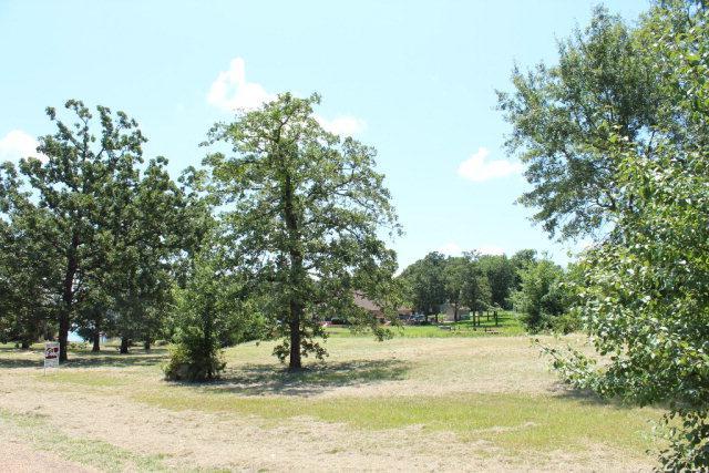 120 Adison Lane, MABANK, TX 75156 (MLS #82621) :: Steve Grant Real Estate
