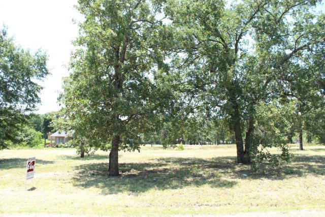 114 Adison Lane, MABANK, TX 75156 (MLS #82622) :: Steve Grant Real Estate