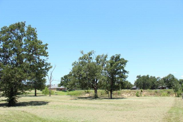 188 Surls Drive, MABANK, TX 75156 (MLS #82624) :: Steve Grant Real Estate