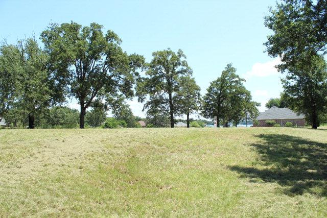 213 Ellen Lane, MABANK, TX 75156 (MLS #82626) :: Steve Grant Real Estate