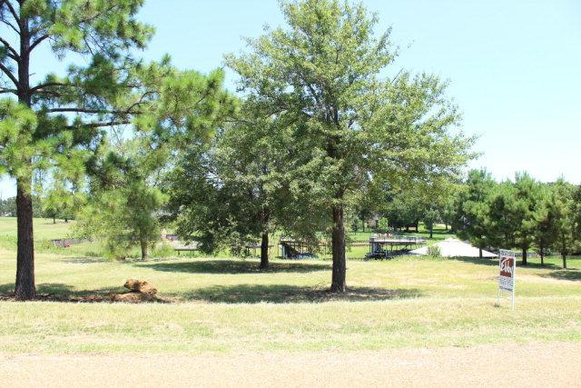 107 Adison Lane, MABANK, TX 75156 (MLS #82627) :: Steve Grant Real Estate