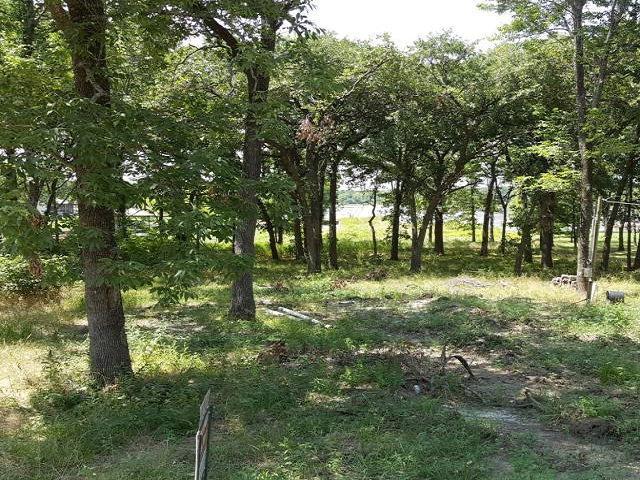32 Oak Landing Circle, MABANK, TX 75156 (MLS #83063) :: Steve Grant Real Estate