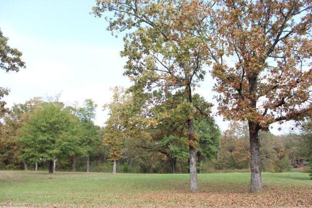 0 Avery Lane, MABANK, TX 75156 (MLS #83681) :: Steve Grant Real Estate