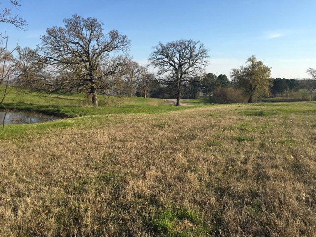 0 Early Morning Drive, ATHENS, TX 75752 (MLS #84494) :: Steve Grant Real Estate
