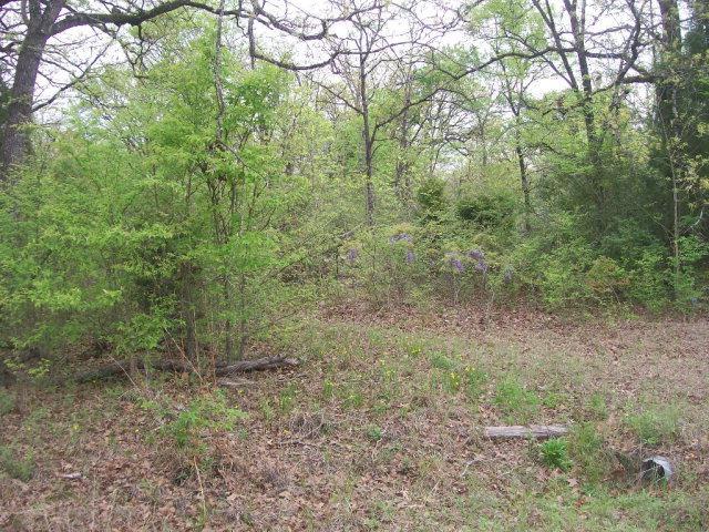 5314 Tom Hickman Lane, LOG CABIN, TX 75148 (MLS #84568) :: Steve Grant Real Estate