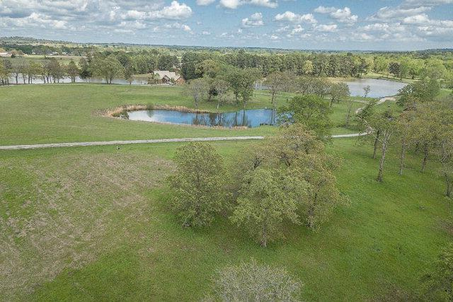 14170 Caddo Creek Circle - Photo 1