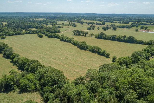 11000 Cr 4234, POYNOR, TX 75782 (MLS #84967) :: Steve Grant Real Estate