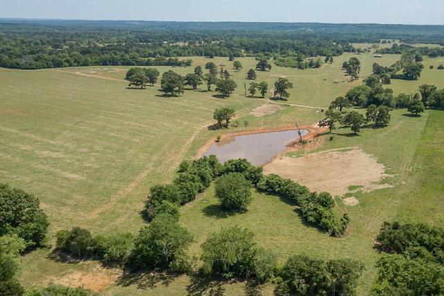 11300 Cr 4234, POYNOR, TX 75782 (MLS #84969) :: Steve Grant Real Estate