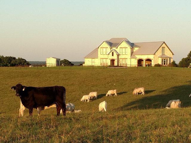 11160 Fm 2588, LARUE, TX 75770 (MLS #85018) :: Steve Grant Real Estate