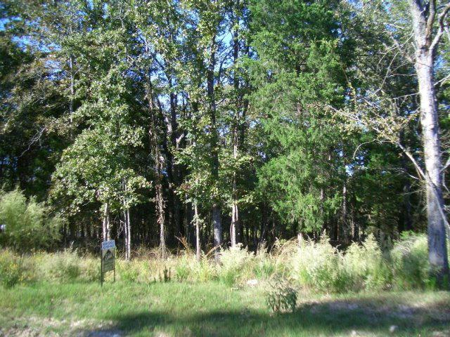 Lot 454 Safari Bluff - Photo 1