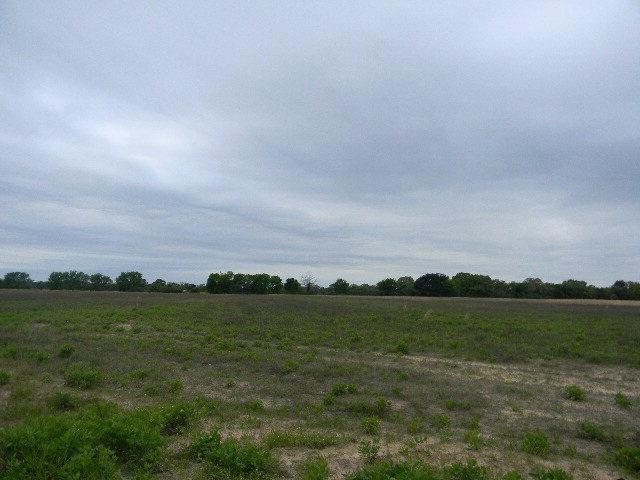 0 Cr 3614, BROWNSBORO, TX 75756 (MLS #85514) :: Steve Grant Real Estate