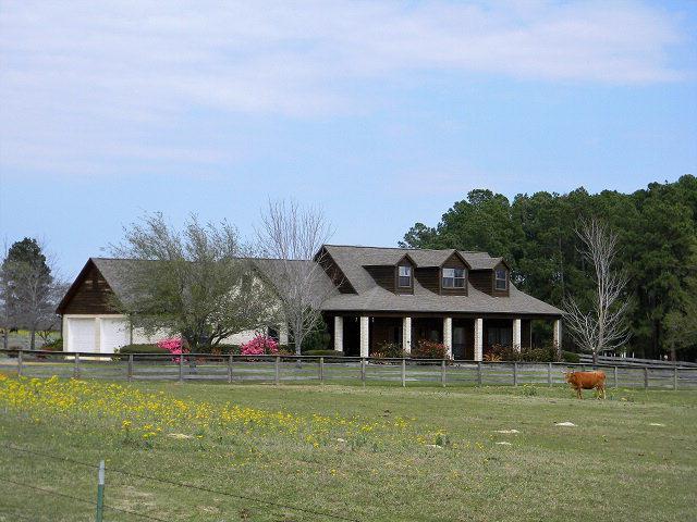 2151 Cr 3821, ATHENS, TX 75752 (MLS #85694) :: Steve Grant Real Estate