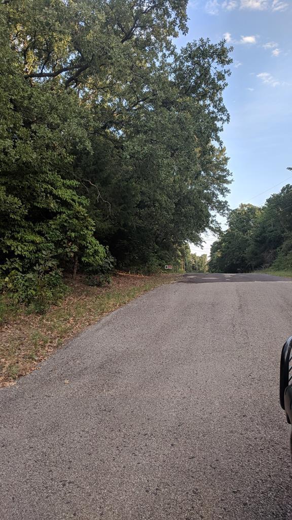 Lot 24 Holly Glen, Murchison (Area), TX 75778 (MLS #86180) :: Steve Grant Real Estate