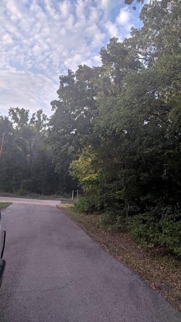554 Holly Glen, MURCHISON, TX 75778 (MLS #86181) :: Steve Grant Real Estate