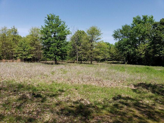 256 Garner, MABANK, TX 75156 (MLS #86227) :: Steve Grant Real Estate