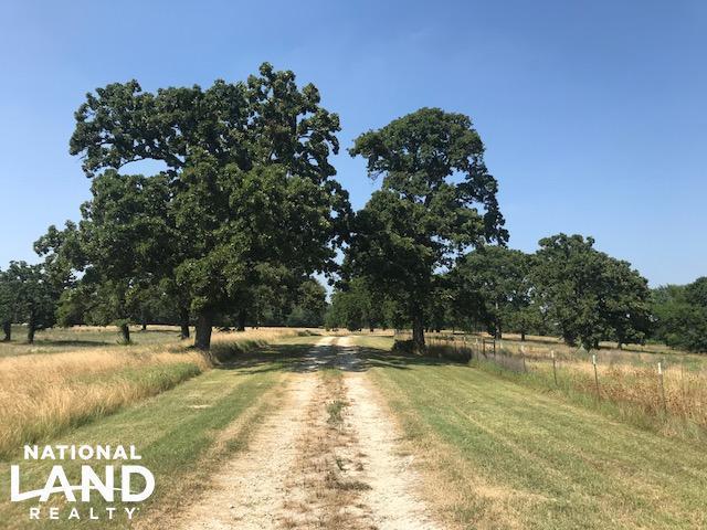 9639 Fm 1861, EUSTACE, TX 75124 (MLS #86878) :: Steve Grant Real Estate