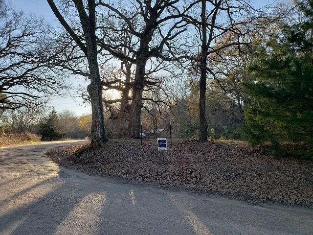 110 Albacore Dr, MABANK, TX 75156 (MLS #87196) :: Steve Grant Real Estate