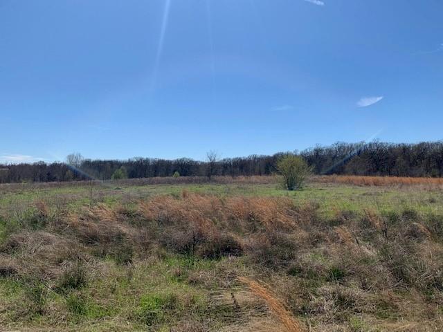 531 S Gun Barrel Lane, GUN BARREL CITY, TX 75156 (MLS #87793) :: Steve Grant Real Estate