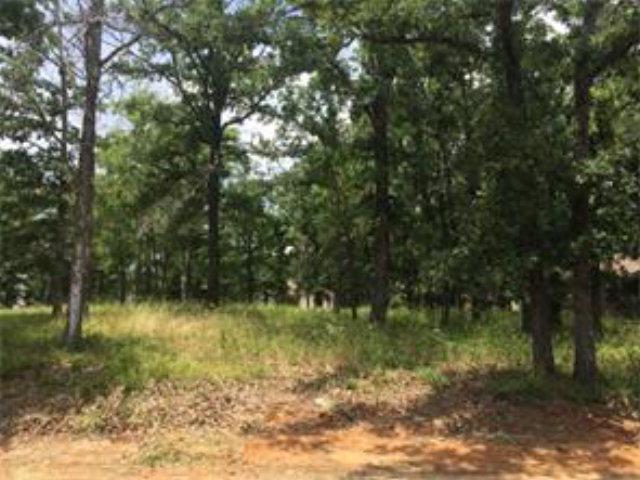 152 Pinehurst Drive, MABANK, TX 75156 (MLS #88978) :: Steve Grant Real Estate