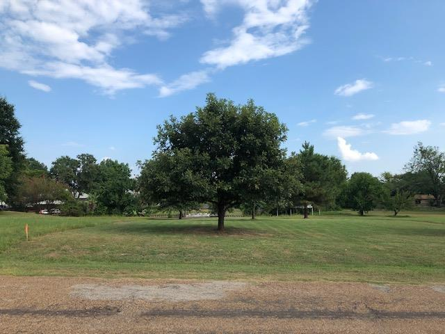 0 Rocking Chair Ranch Road, TRINIDAD, TX 75163 (MLS #89104) :: Steve Grant Real Estate